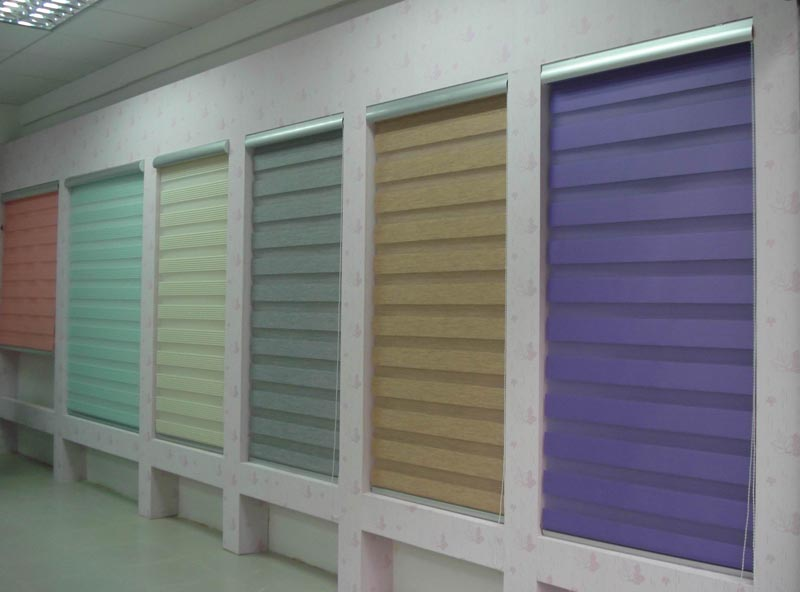 Zebra Combi Blinds for window